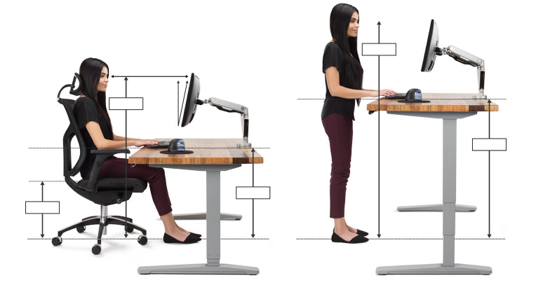 Image result for Ergonomics office furniture settings